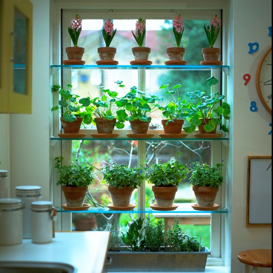 Vertical gardening if you 39 re short on space go up up for Make your own indoor garden