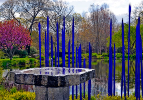 Peter's Pond. Blue Spears by Dale Chihuly, blown glass.